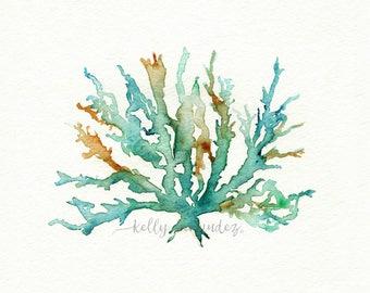 Beach Print, Beach Art, Coral Print, Wall Art, Watercolor Print, No. 2 Sea Coral
