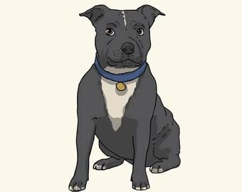 Staffordshire Bull Terrier Greetings card: Blank