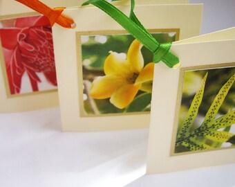 3 Hawaiian Gift Tags - Lauae fern, Puakenikeni, Torch Ginger, Botanical, Tropical, Made in Hawaii, Card, Graduation Lei Tag