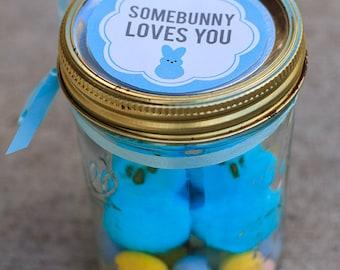 Printable Easter mason jar label instant downloadable PDF  | Easter treat bag label | gift tag | Easter bunny label