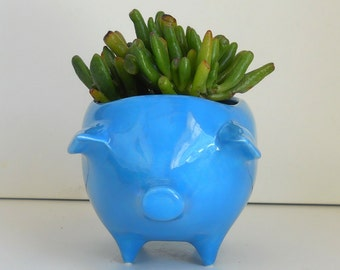 Ceramic Pig Planter Vintage Design in Turquoise Blue Makes a Great Sponge Holder Ceramic Animal for Succulents MCM