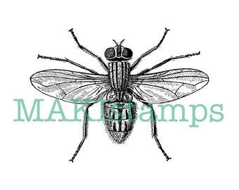 Fly rubber stamp / science stamp / natural history insect rubber stamp - unmounted or cling stamp (160603)