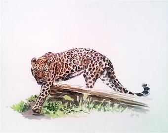 Original Jaguar Painting - 14x11 Watercolor