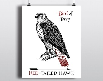 Red Tailed Hawk Instant Download, Bird of Prey Art Print, Printable Wall Art, DIY Wildlife Poster, Beautiful Hawk Illustration