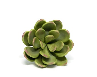 Small Green and Purple Sugar Succulent for wedding cake toppers, sugar flower arrangements and gumpaste decorations