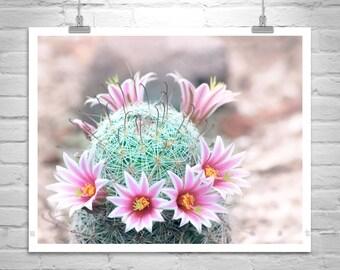 Cactus with Pink Flowers, Wildflower Print, Desert Flower Art, Cactus Photograph, Cactus Flower Art, Pastel Flower Decor, Arizona Gift
