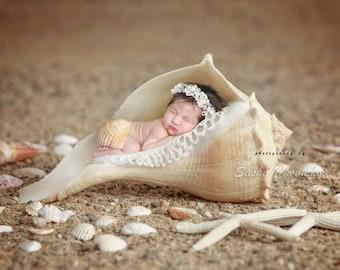 Sea shell digital background , newborn baby backdrop nautical sea fairy tail  mermaid
