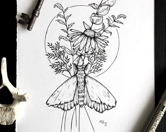 Moth Love : Original drawing flowers moth traditional