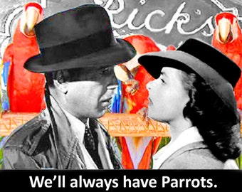 Parrot Lovers MiniPoster - We'll always have Parrots - We'll always have Paris
