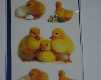 "three planks of themes ""ducklings"" stickers"