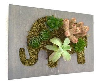 Elephant Succulent + Cacti Vertical Garden | Vertical Planter | Living Wall | Wall Planter