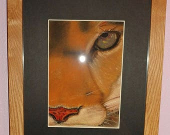Framed & Matted Pastel Puma/Mountain Lion/Cougar