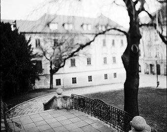 Bratislava, Old Town Staircase, Architecture, Tree, Signed Photography Giclee Art Print, Limited Edition, Analog, Square, Large Scale Print