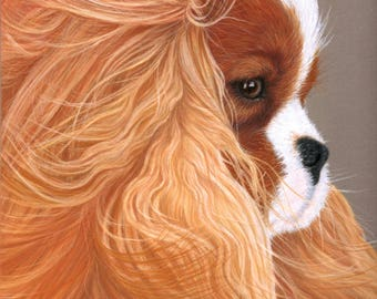 Portrait to order, Custom pet drawing, animal portrait, pet portrait , dog portraits, personalized pet