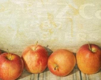 Apple Harvest - 8x10 Fine Art Photograph