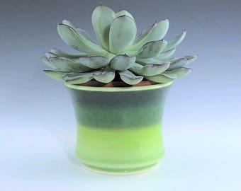 """Green Succulent Planter, Small Ceramic Planter, Porcelain Plant Holder, Green Indoor Planter, Pottery Planter With 3"""" Removable Plastic Pot"""
