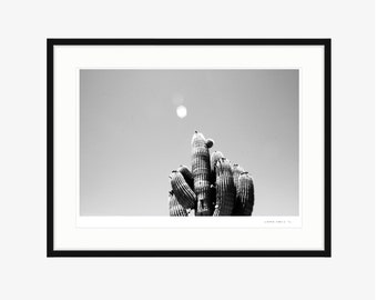 ART PRINT | 'Road to Joshua Tree' by Laura Wells - digital file download