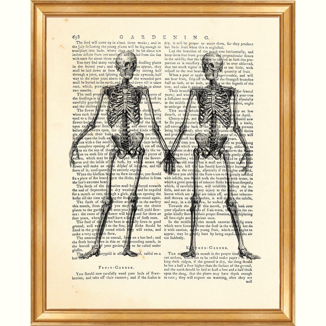 Anatomie-Kunst, Anatomie Geschenk, Anatomie-Druck, Skelett paar Jahrgang Anatomie menschlicher Körper Zeichnung Wörterbuch Kunstdruck Geschenk