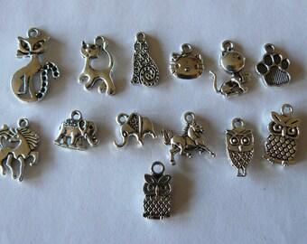 set of 13 charms