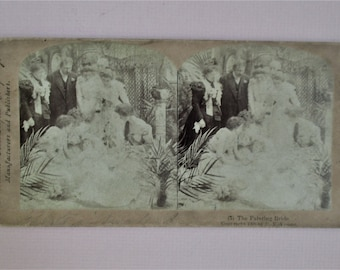 Antique Stereoview Card The Fainting Bride 1906 R Y Young NY Vintage Human Interest Period Clothing Stereo Card Sepia Collectible Vintage