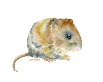 Vole Watercolor Painting - 10 x 8 - Giclee Print 11 x 8.5 - Woodland Animal Nursery Art Print