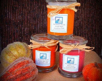Fall Fragrance Collection - Soy Candle Gift Set - Apple Harvest Autumn Magic and Pumpkin Apple Butter Set of Three 12 oz Status Jars