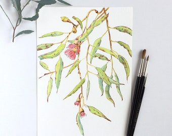 Eucalyptus branch original watercolor painting A4 horizontal; Australian native plant artwork; modern botanical wall art; flowering gum tree