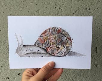 Snail Greeting Card Snail Card Snail Watercolour Painting Snail Lover Gift Snail Home Decor Snail Birthday Card Just Because Card Snail Art