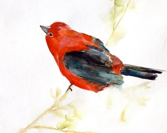 Watercolor Painting - Bird Art Watercolor - September - Large Print 24x30 - Poster - Animal Art - Red - Nature