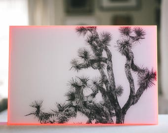 MONOCHROME print in neon pink acrylic frame