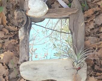 Driftwood mirror and its tillandsia
