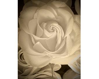 Rose Print, Sepia Photography, Flower Still Life, Floral Art Print,  Zen Art, Rose Decor, Bedroom Decor, Rose Wall Art