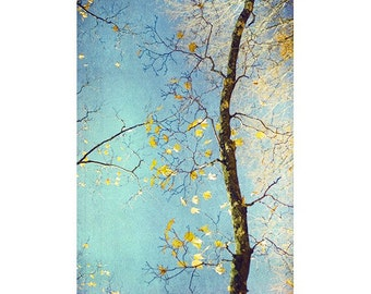 Nature Photography, Abstract Photography, Asian Decor,  Autumn Landscape,  Turquoise Gold Decor, Woodland Art Print