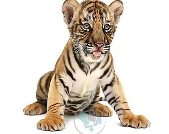Printable Wall Art, Tiger Cub #2, Animal Nursery Prints, Safari Animal Prints, Size 8x10