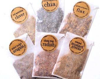 REFILL Seed Packets Set of 6 - DIY Microgreens Indoor Garden Kit - Certified Organic Microgreens Seeds