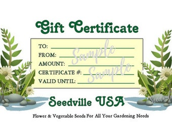 Seedville USA Shop Gift Certificate - Ferns Rock Design - By Email or Postal Mail - You Choose Amount