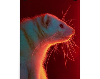 Dramatic Ferret - Poster