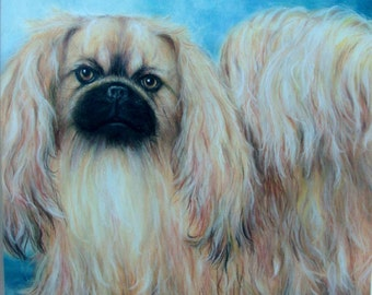 "SAMPLE of Fine Art in Soft Pastel, ""CHARLIE"", Pekinese, 16 x 20, Commission your Pet Portrait today"