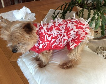 Wool dog sweater small dog or cat 2 to 3 kg 500 500 kg