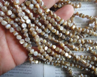 freeform natural shell beads, near round mop beads, 5mm, about 15.5 inch