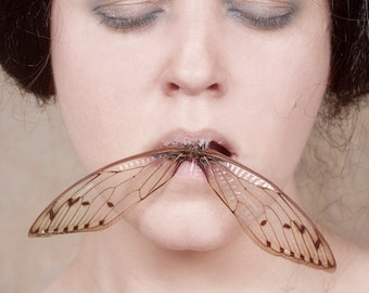 The Last Song You'll Ever Sing - FREE SHIPPING Surreal Photo Print Creepy Portrait Cicada Wings Mouth Brown Pink Mouth Wall Decor Dark Art