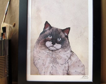 Mr. Ragdoll Cat  // Signed A4 print
