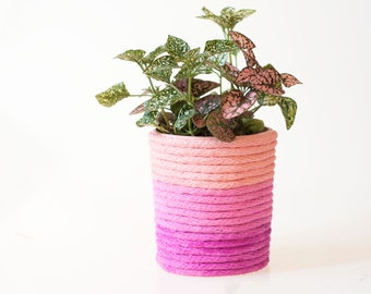 Upcycled Ombré Planter