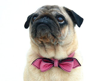 Wedding Pink Martini Bowtie Dog Collar