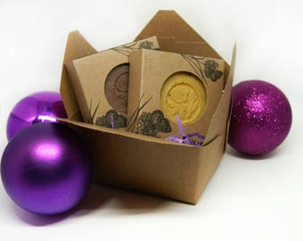 2 Soaps Holiday Gift Pack