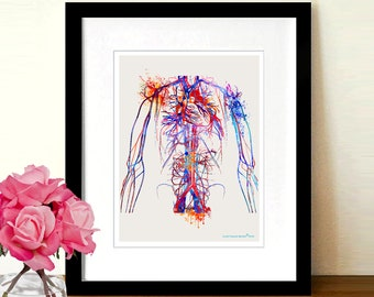 "Watercolor Vascular System,8.5"" x 11"", Anatomy Medical, Circulatory system, Nurse Graduation gift, Cardiologist gift, Vascular surgeon gift"