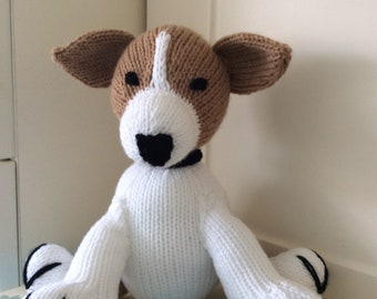 Max the Jack Russell