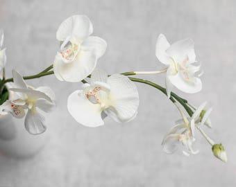 """1/3/6/12 pcs 31"""" White Phalaenopsis Orchid Stem, Artificial Florals Supplies, Faux Wedding Flowers Centerpieces, Natural Oriental Home Decor"""
