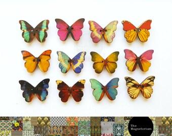 Butterfly Magnets [Fridge Magnets, Fridge Magnet Sets, Refrigerator Magnets, Magnet Sets, Office Decor, Kitchen Decor, Magnetic Board]