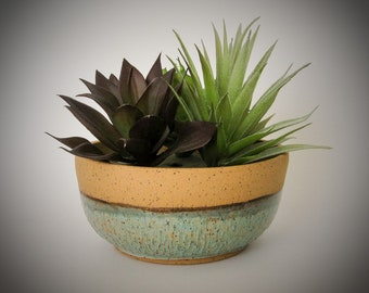 Succulent Planter - Ceramic Planter - Cactus Pot - Wheel Thrown Stoneware Pottery
